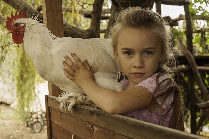 dr Tota Krisztian - Little Farm Girl  / Kis farmerlany